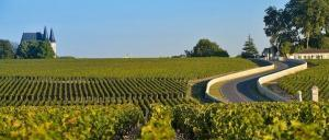 vineyard medoc driver tour