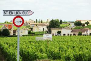 vineyards st emilion tour driver